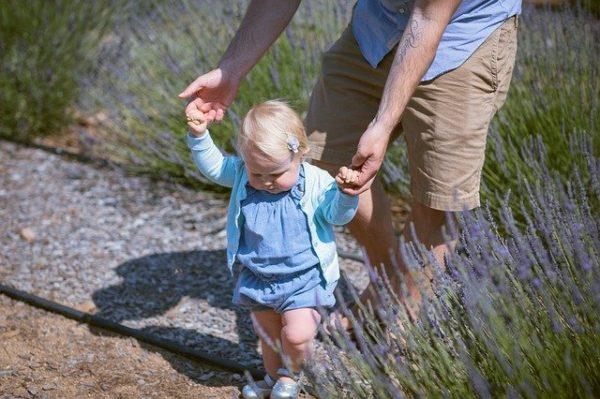 赤ちゃん 散歩 どこに行く