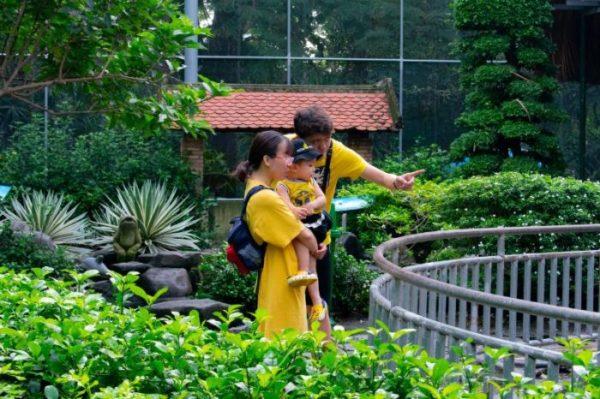赤ちゃんお動物園に行く時に持っていくもの