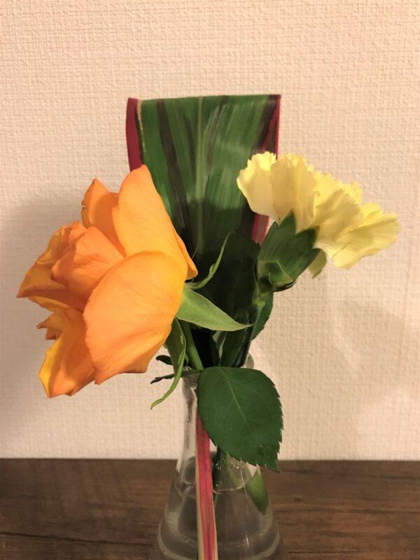 ブルーミーライフの3回目のお花