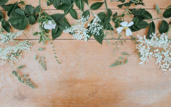 お花のサブスクは他にもあるよ