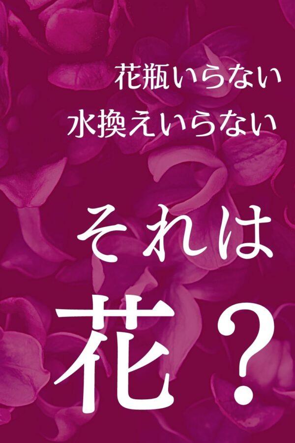 【花の定期便】ライフルフラワーの口コミまとめ